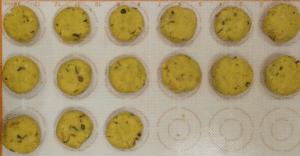 khara biscuit diameter
